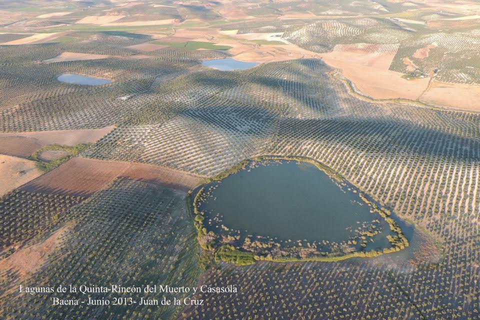 lagunas de Baena1