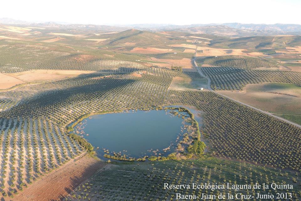 lagunas de Baena2